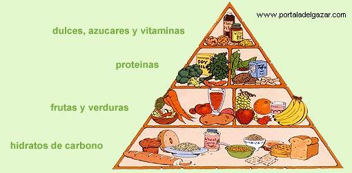 Que Significa Carbohidratos Proteína Vitaminas Minerales Y Grasas ...